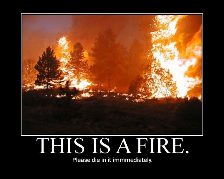 diaf fire die in it forest meme image macro