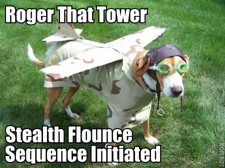 roger air traffic control dog flounce image macro