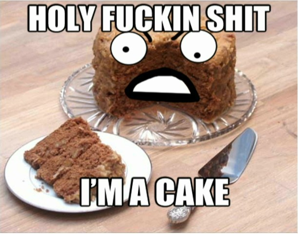 holy shit i'm a cake chocolate image macro