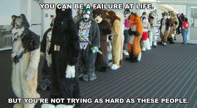 failure life not trying hard enough furries queue image macro