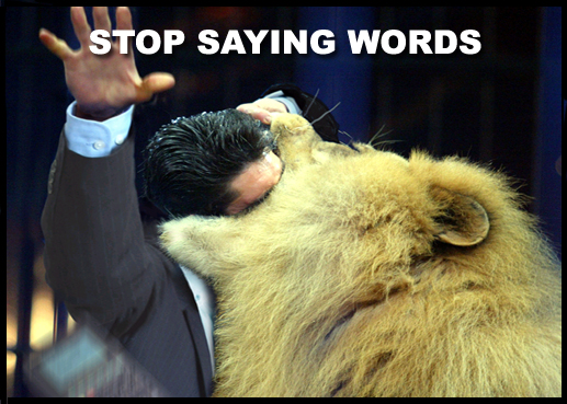 stop saying words stfu lion image macro