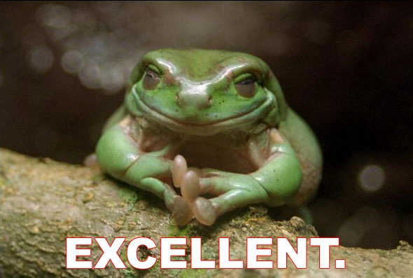 excellent good green frog toad image macro