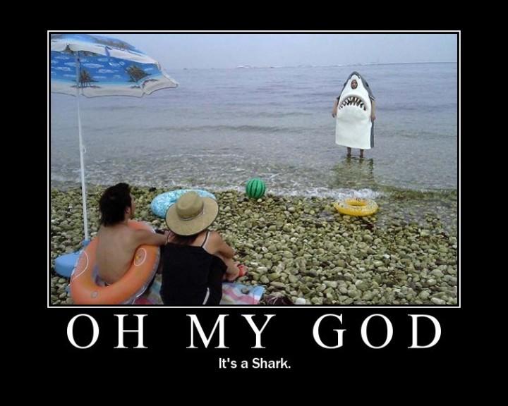 OMG shark costume beach image macro