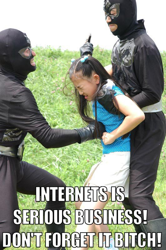 internets serious business ninjas image macro