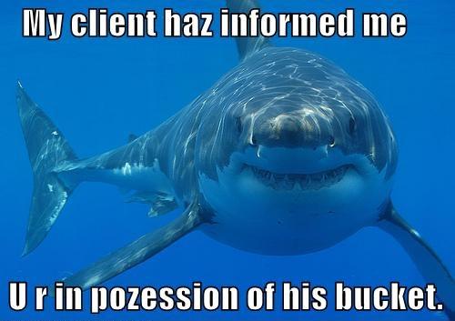 lawyer shark bucket possession lolrus image macro