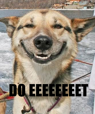 do eeettt dog smiling image macro