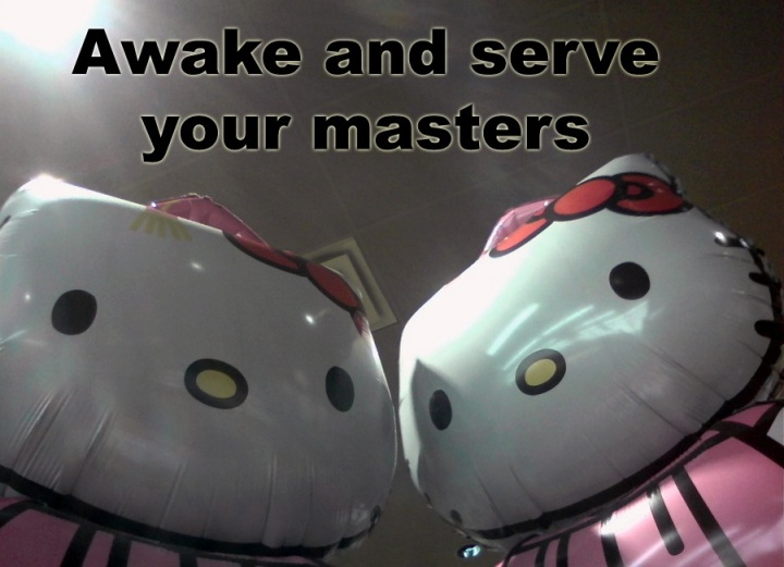 hello kitty giant balloon japan serve your masters image macro