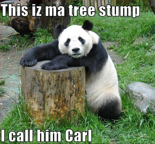 treestump love panda carl image macro