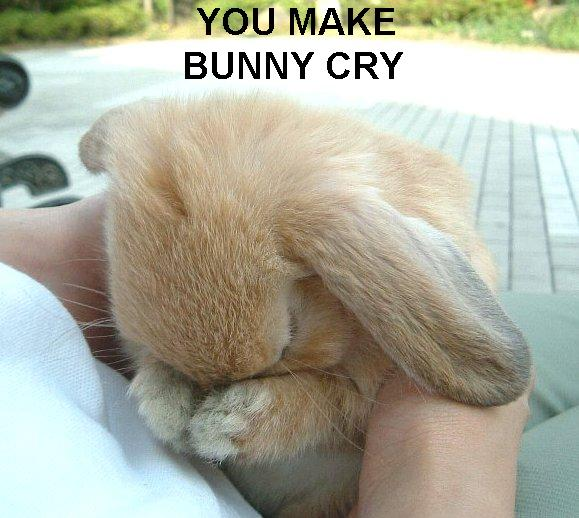 you make bunny cry rabbit crying sad butthurt image macro