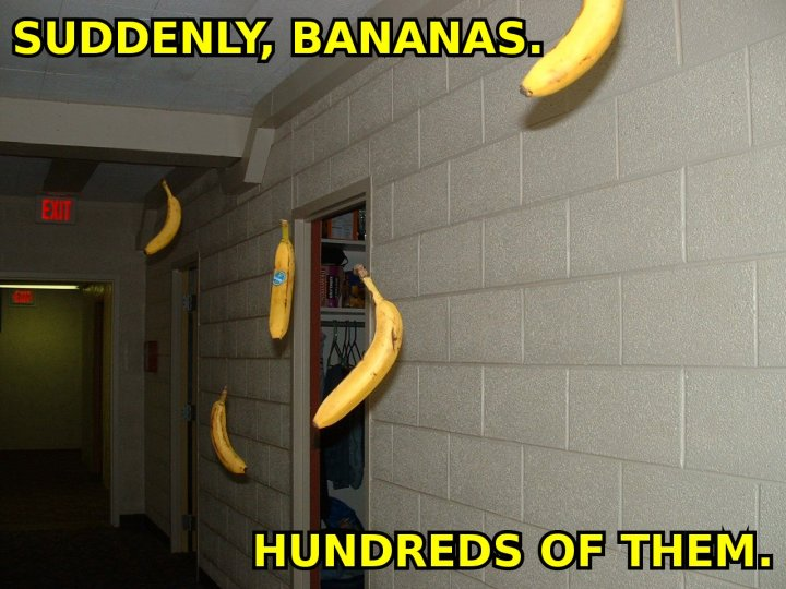 suddenly bananas hundreds 100s thousands lots flying image macro