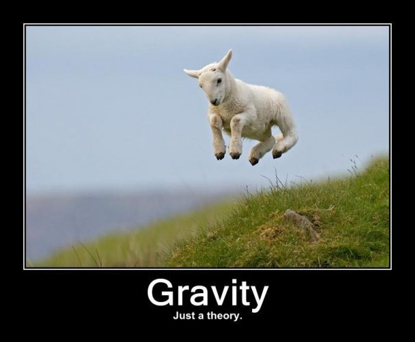 jumping frolicking lamb gravity science theory image macro