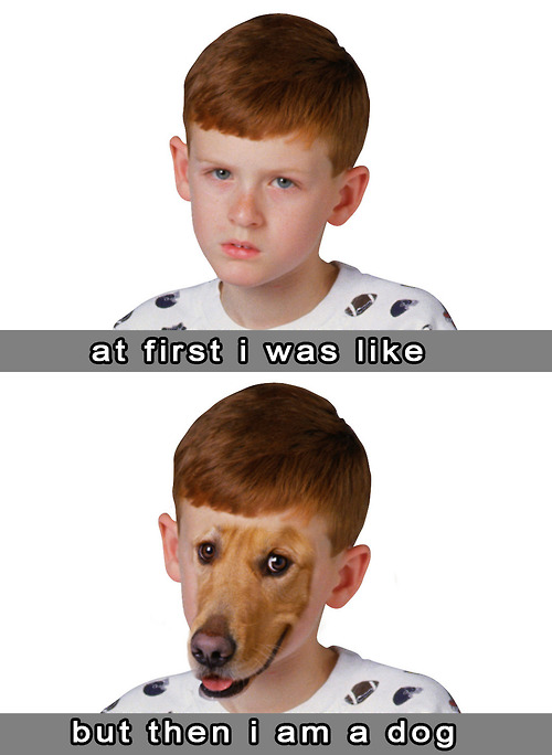 at first i was like meme then i was dog kid image macro