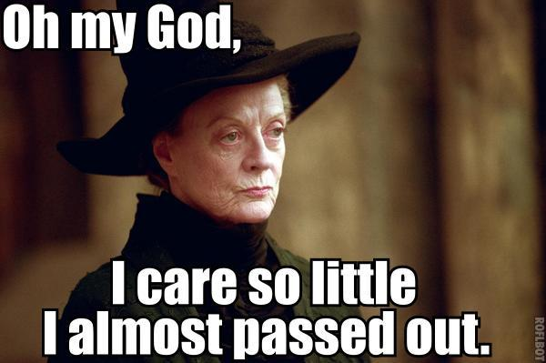 meme nobody cares dont care minerva mcgonagall harry potter image macro