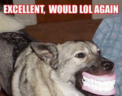 dog with false teeth smiling lol again image macro