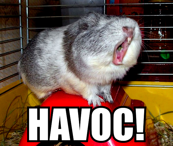 cry havoc dogs of war guinea pig hamster shakespeare image macro