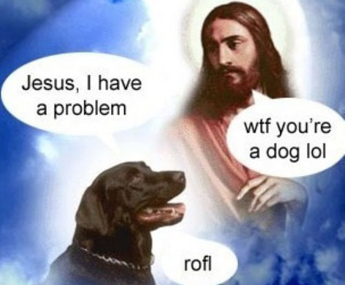 jesus christ dog halo problems wtf lol rofl image macro