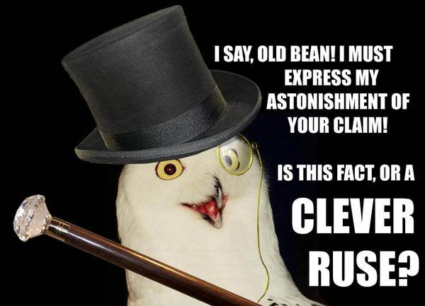 posh english top hat monocle i say old bean shock owl bird image macro