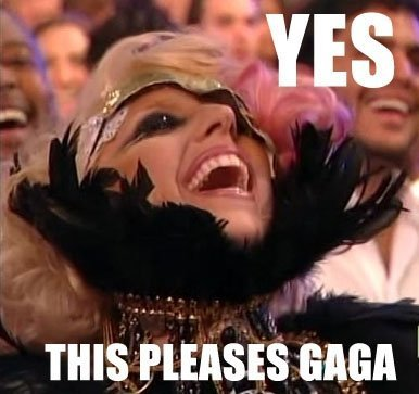 lady gaga your offering pleases kitty meme image macro