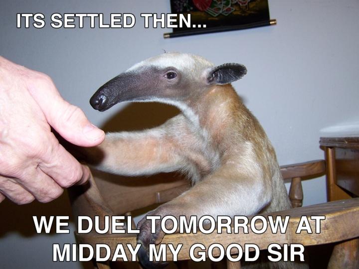 anteater meme shaking hands duel gentlemans agreement code image macro