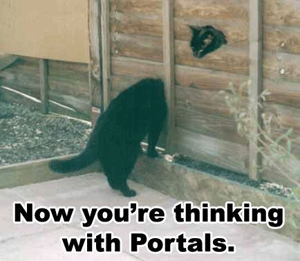 black cats with head in a fence portals gamers image macro