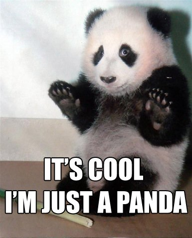 whoa scared worried panda dont be mad at me image macro