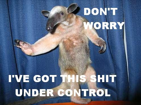 anteater meme chilled calm down dont panic image macro