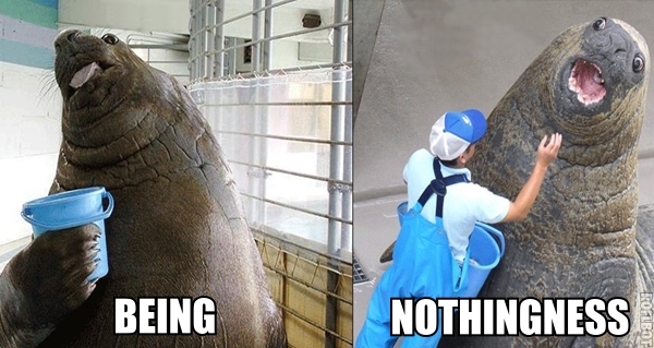 satre existentialism elephant seal walrus bucket meme image macro