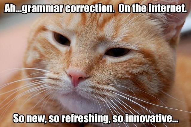grammar correction nazi cat ginger internets image macro