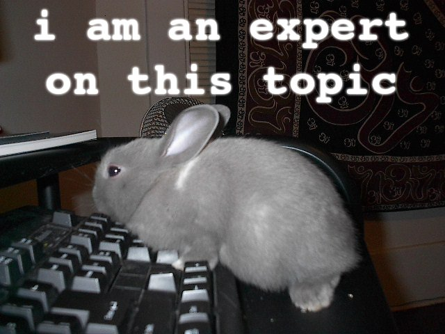 topic_expert_rabbit_bunny_computer_keyboard_image_macro
